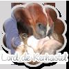 Lord-de-Kerhastel