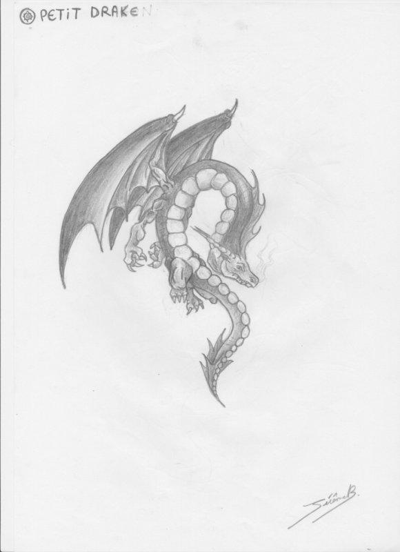petit drake
