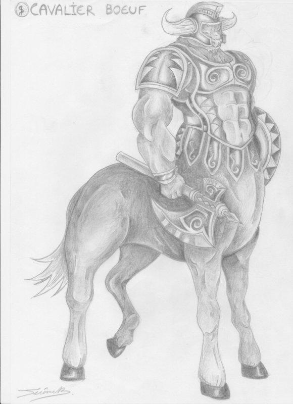 cavalier boeuf