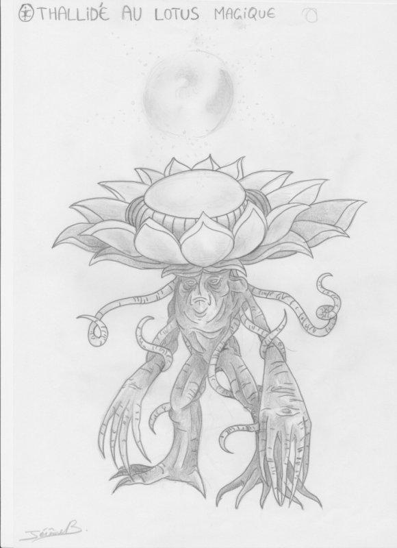 thallidé au lotus magique