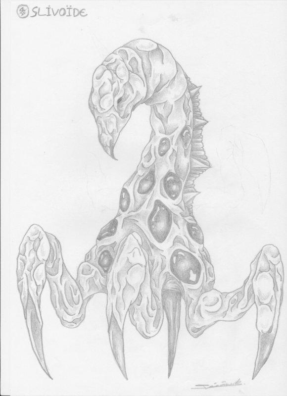 slivoïde