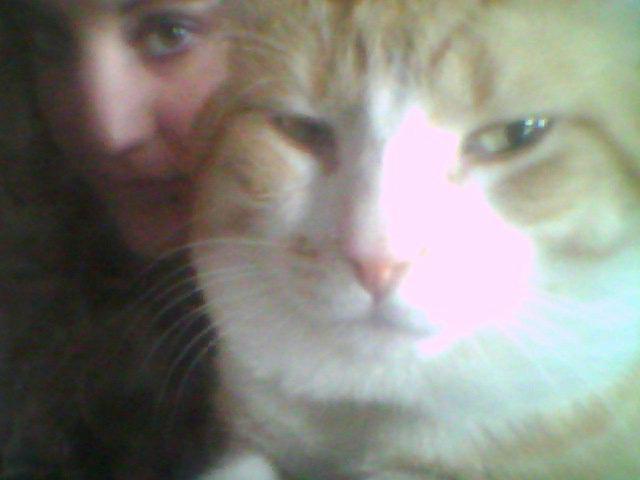 Petit selfie avec mon amour de chat :p