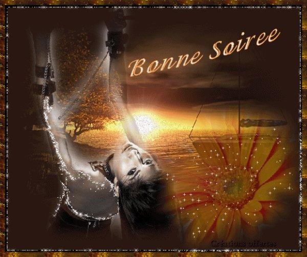 BONNE SOIREE A VOUS TOUS ET TOUTES.... BISOUSSS.... !!!
