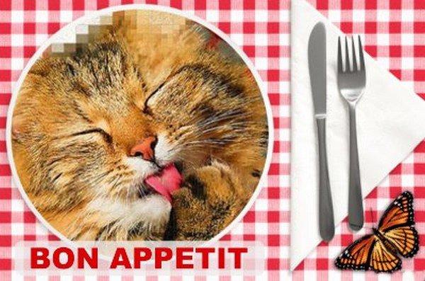 BIENTOT L'HEURE DU DEJEUNER...!!! BON APPETIT A VOUS TOUS ET TOUTES...