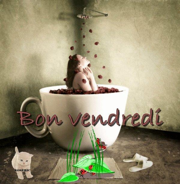 BONNE NUIT....BON VENDREDI..BONNE FIN DE SEMAINE.... BISOUSS....!!!!