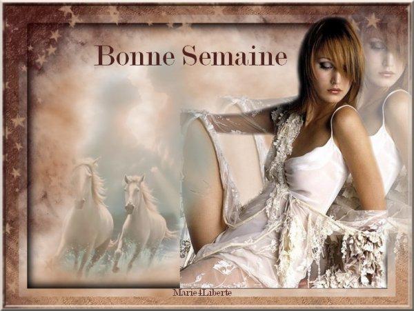 BONNE NUIT MES AMI(E)s et BONNE SEMAINE A VOUS TOUS ET TOUTES....BISOUSS....!!!