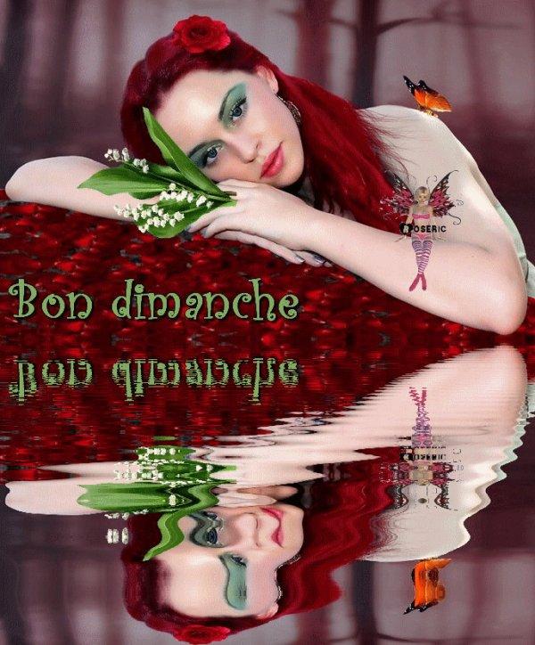 JE VOUS SOUHAITE UNE DOUCE NUIT ET UN BON DIMANCHE...BISOUSS!!!