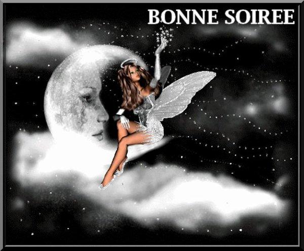 BONNE SOIREE A VOUS TOUS ET TOUTES...BISOUSS...!!!
