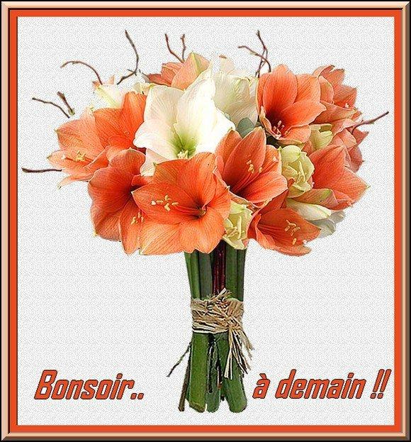 BONNE SOIREE A VOUS TOUS ET TOUTES....DOUX BISOUS...!!!