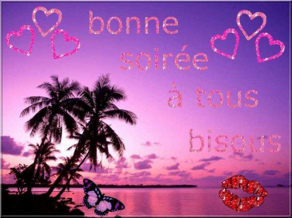 BONNE SOIREE A VOUS TOUS ET TOUTES ET BON DEBUT DE WEEK END ! GROS BISOUSS.... !!!