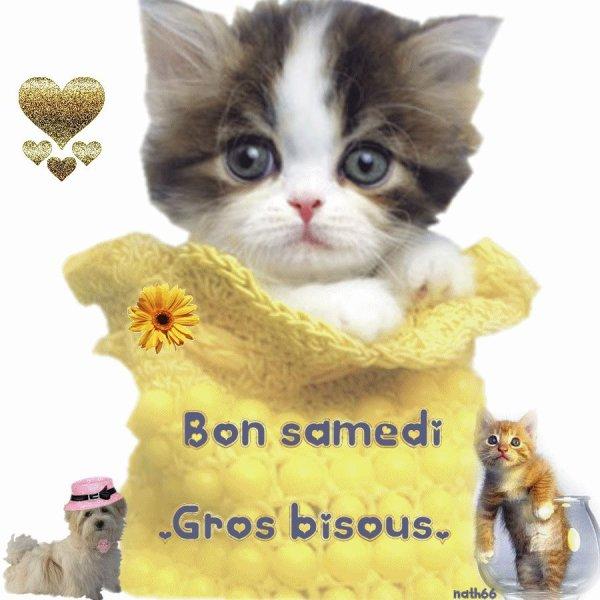 BON WEEK END A VOUS TOUS ET TOUTES....ET PROTEGEZ VOUS DE LA CANICULE... N'OUBLIEZ PAS DE VOUS HYDRATER REGULIEREMENT... ! BISOUSS.... !!!