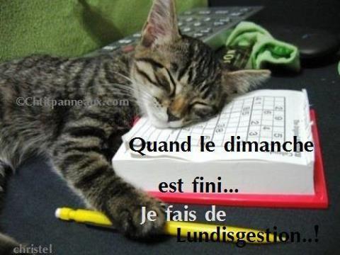 BONNE SOIREE A VOUS TOUS ET TOUTES...BONNE FIN DE WEEK END... BISOUSS.... !!!!