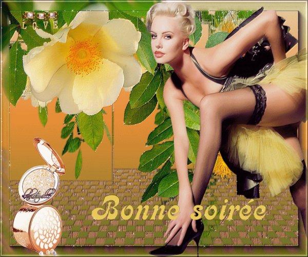 ENFIN LE WEEK END ARRIVE !!!... BONNE SOIREE ET BON DEBUT DE WEEK END...! BISOUSS.... !!!