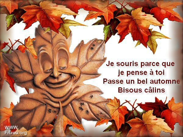 VOILA L'AUTOMNE S'INSTALLE...!!! JE VOUS SOUHAITE UN BEL AUTOMNE ET UN BON WEEK END... ! BISOUSSS... !!!