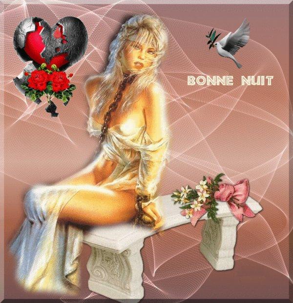 BONNE NUIT ET BON MERCREDI A VOUS TOUS ET TOUTES... BISOUSS... !!!