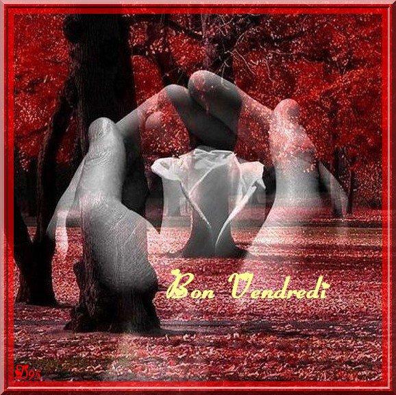 BON VENDREDI...BONNE FIN DE SEMAINE A VOUS TOUS ET TOUTES...BISOUSS... !!!