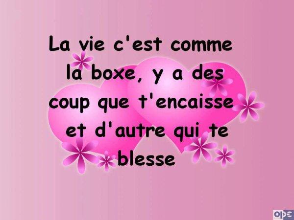 """LA VIE C""""EST COMME LA BOXE.... !!!"""