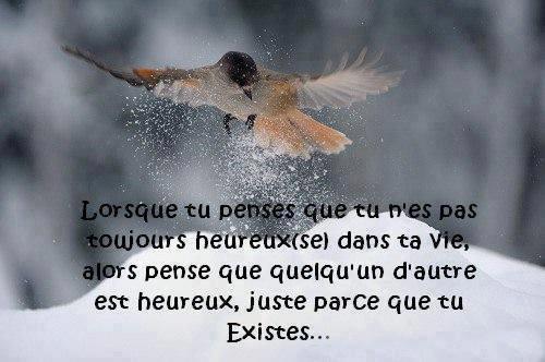 AU REVOIR L'AUTOMNE... BONJOUR L'HIVER !!!
