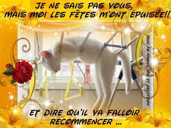 DERNIER JOUR DE L'ANNEE MAIS NOUVELLE SEMAINE QUI COMMENCE ! BON COURAGE A CEUX ET CELLES QUI COMME MOI BOSSENT DEMAIN SNIF ET BON WEEK PROLONGE AUX AUTRES...BON REVEILLON DU NOUVEL AN !!! BISOUSS.... !!!