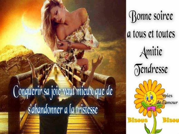 BONNE SOIREE ET DOUCE NUIT..BON DEBUT DE WEEK END AUSSI....BISOUSS.... !!!