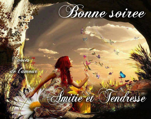 BONNE SOIREE ET DOUCE NUIT....BISOUSSS....!!!