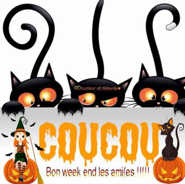 BON SAMEDI ENSOLEILLE ET BON WEEK END A VOUS TOUS ET TOUTES !!! BISOUS....♥♥♥
