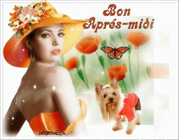 BON MERCREDI APRES-MIDI A VOUS TOUS ET TOUTES...BISOUS.... !!!
