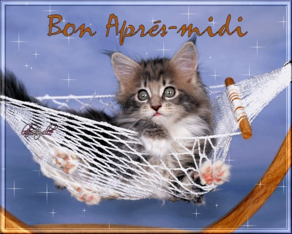 BON SAMEDI APRES-MIDI ! BISOUS MES AMI(E)S.....♥♥♥