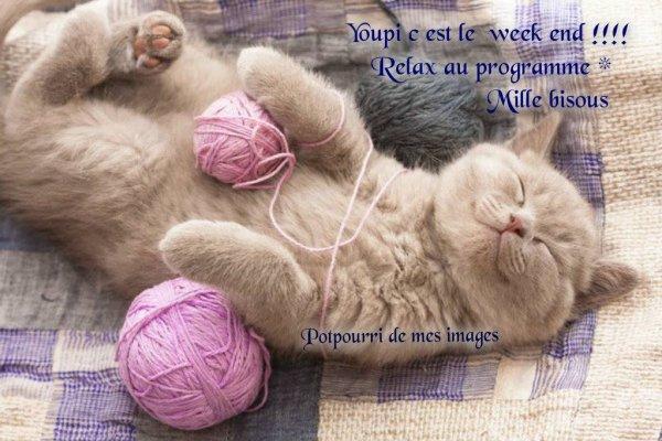 BON SAMEDI APRES-MIDI ET BON WEEK END MALGRé LE VILAIN TEMPS ( par chez moi en tout k !!!) LE PRINCIPAL EST LE SOLEIL PRESENT DANS NOS COEURS !!! BISOUS MES AMI(E)S....♥♥♥
