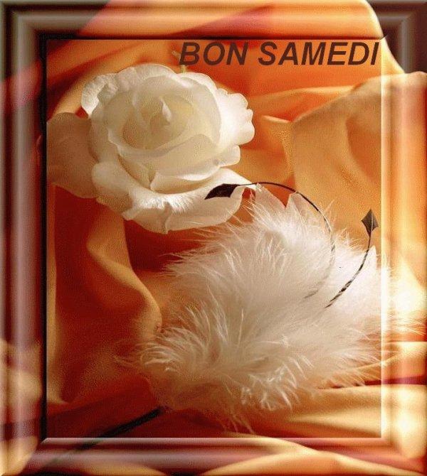 BON SAMEDI APRES-MIDI....BON WEEK END ET BONNES FETES DE FIN D'ANNEE !!!! BISOUSS MES AMI(E)S..... ♥♥♥