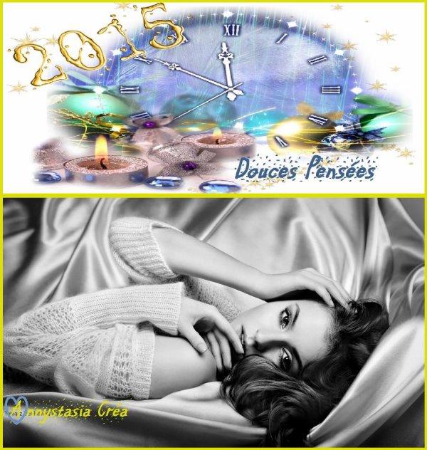 BONNE ANNEE 2015... PLEIN DE BONHEUR POUR VOUS TOUS ! BISOUS MES AMI(E)S..... ♥♥♥