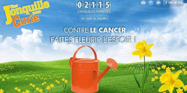UNE JONQUILLE POUR CURIE...GROSSES PENSEES POUR TOUTES CES PERSONNES ATTEINTES D'UN CANCER  (l)(l) (l)