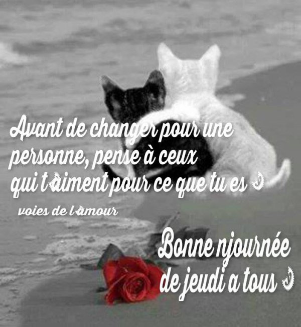 BON JEUDI APRES-MIDI .... UN LONG WEEK END SE PROFILE A L'HORIZON...YES !!!! BISOUS MES AMI(E)S.... ♥♥♥