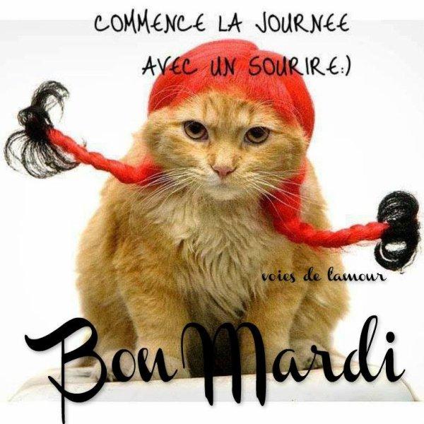 BON MARDI APRES-MIDI ENSOLEILLé !!! ;) BISOUS ..... ♥♥♥