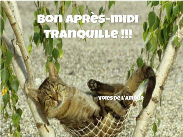 BON VENDREDI ET BON WEEK END PROLONGé du 8 MAI ! BISOUS MES AMI(E)S....♥♥♥