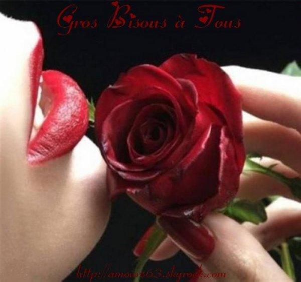 BONNE NUIT MES AMI(E)S....FAITES DE BEAUX ET DOUX REVES ...BONNE FIN DE WEEK END ! BISOUS DU SOIR !!!! ;) (l)