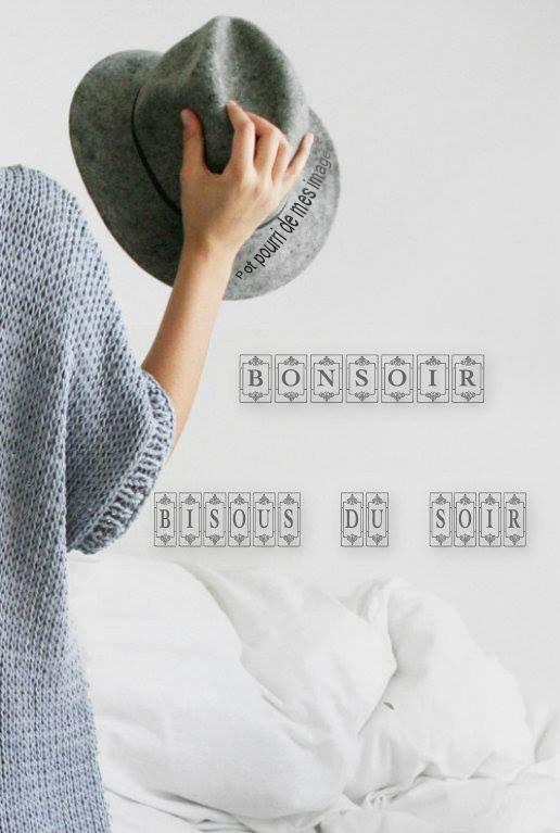 BONNE SOIREE SUIVIE D'UNE DOUCE NUIT ET BON DEBUT DE WEEK END ! BISOUS MES AMI(E)S..... ♥♥♥