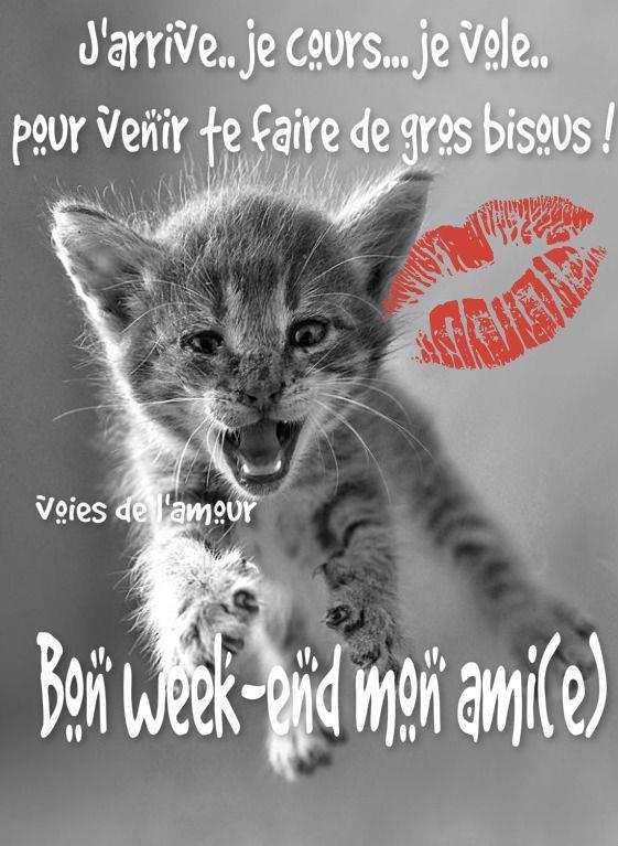 BON SAMEDI APRES-MIDI  A VOUS TOUS ET TOUTES ET BON WEEK END !!!! BISOUS MES AMI(E)S.... ♥♥♥