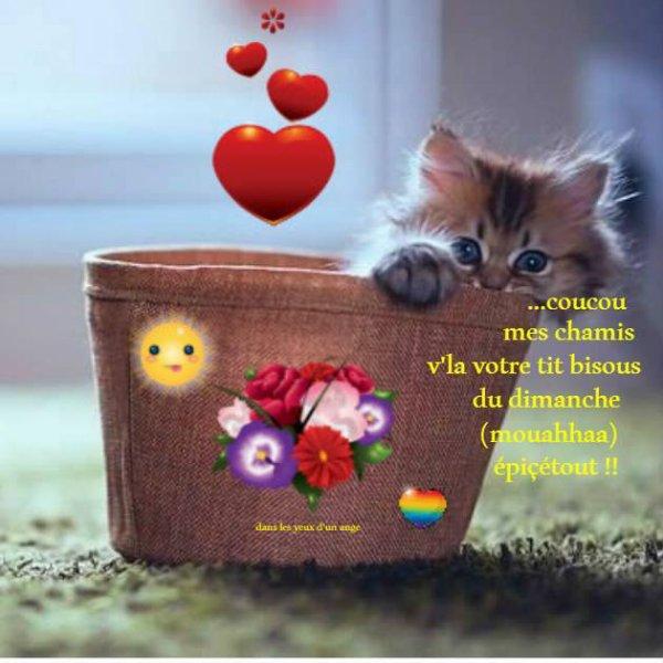 BON DIMANCHE APRES-MIDI....LE DERNIER DIMANCHE AVANT LA RENTREE SCOLAIRE !!! BISOUS MES AMI(e)S..... ♥♥♥