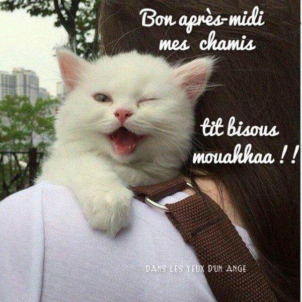 DEJA LE DERNIER JOUR DU MOIS D'AOUT...DEMAIN SEPTEMBRE AVEC LA RENTREE DES CLASSES ....!!!! BON LUNDI APRES-MIDI MES AMI(e)S....BONNE SEMAINE !!!! BISOUSSS ♥♥♥