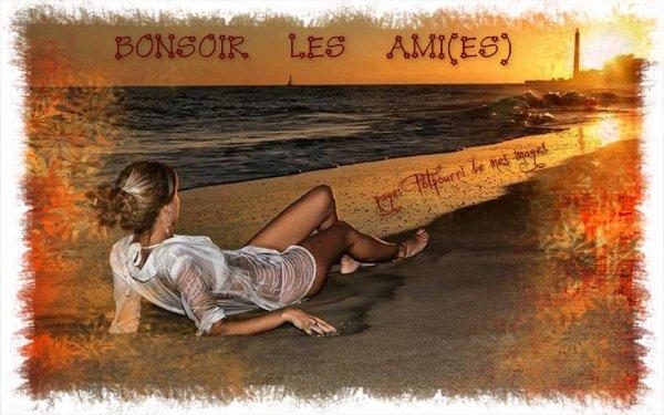 BONNE SOIREE A VOUS TOUS ET TOUTES SUIVIE D'UNE DOUCE NUIT !!! BISOUSSS ♥♥♥