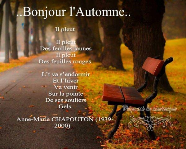 Bye bye l 39 t hello l 39 automne avec ses couleurs chatoyantes - L automne et ses couleurs ...