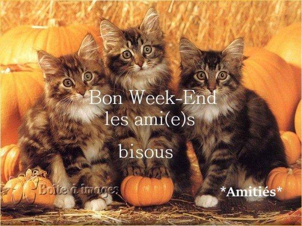 BON SAMEDI SOIR MES AMI(E)S....BON WEEK END ET JOYEUX HALLOWEEN !!!! BISOUS ♥♥♥
