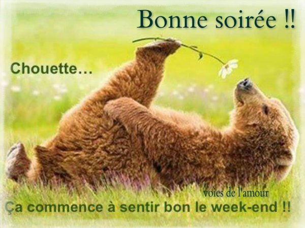 BONNE SOIREE...DOUCE NUIT ET BON DEBUT DE WEEK END !!!  BISOUS MES AMI(e)S.... ♥♥♥
