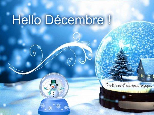 VOILA NOVEMBRE EST DEJA FINI.... BONJOUR DECEMBRE ....LES FETES APPROCHENT....LA FIN DE L'ANNée AUSSI !!! ;)