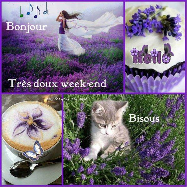 BONNE ET HEUREUSE ANNEE 2016 MES AMI(E)S ET BON WEEK END !!! BISOUSSSS  (l) (l) (l)