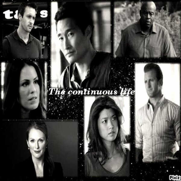 Fanfiction - Hawaii 5-0 : The continuous life