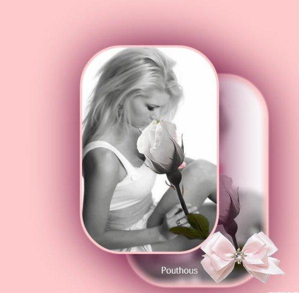 La passion des fleurs
