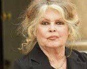 Brigitte Bardot s'indigne contre le sort réservé aux lévriers en Espagne