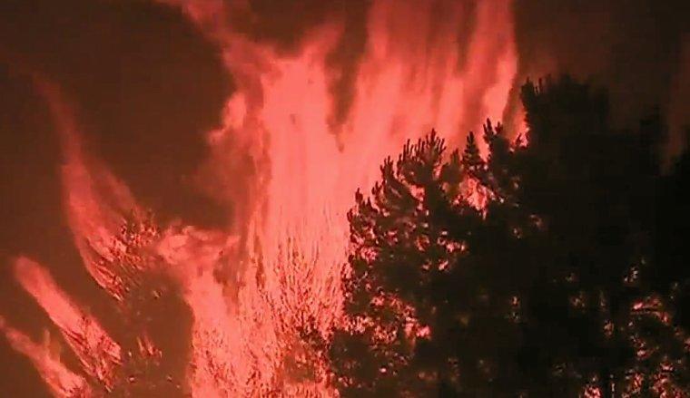 PORTUGAL: Un gigantesque feu de forêt a fait au moins 62 morts